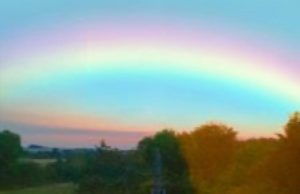 A rainbow is seen over a tree line