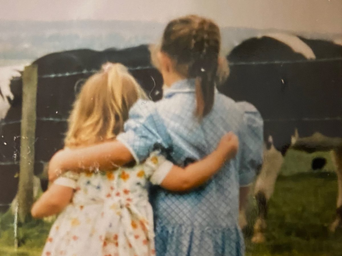 A picture of two children with their arms wrapped around each other and their backs to the camera, looking at a field of cows